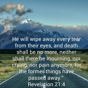 Revelations 21:4  He will wipe away every tear