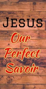 jesus our perfect savior grace and salvation